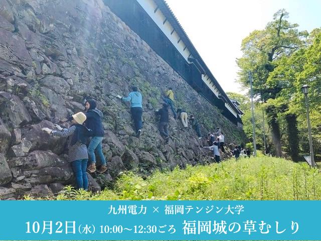 【参加者募集】福岡城跡を一緒にキレイにしませんか?