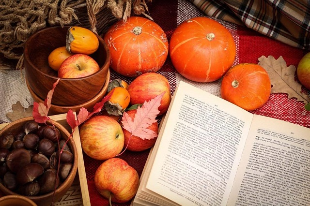 【テン大books】10月企画 ~ 読書の秋のピクニック ~